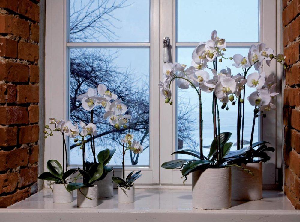 Декоративная композиция из растений