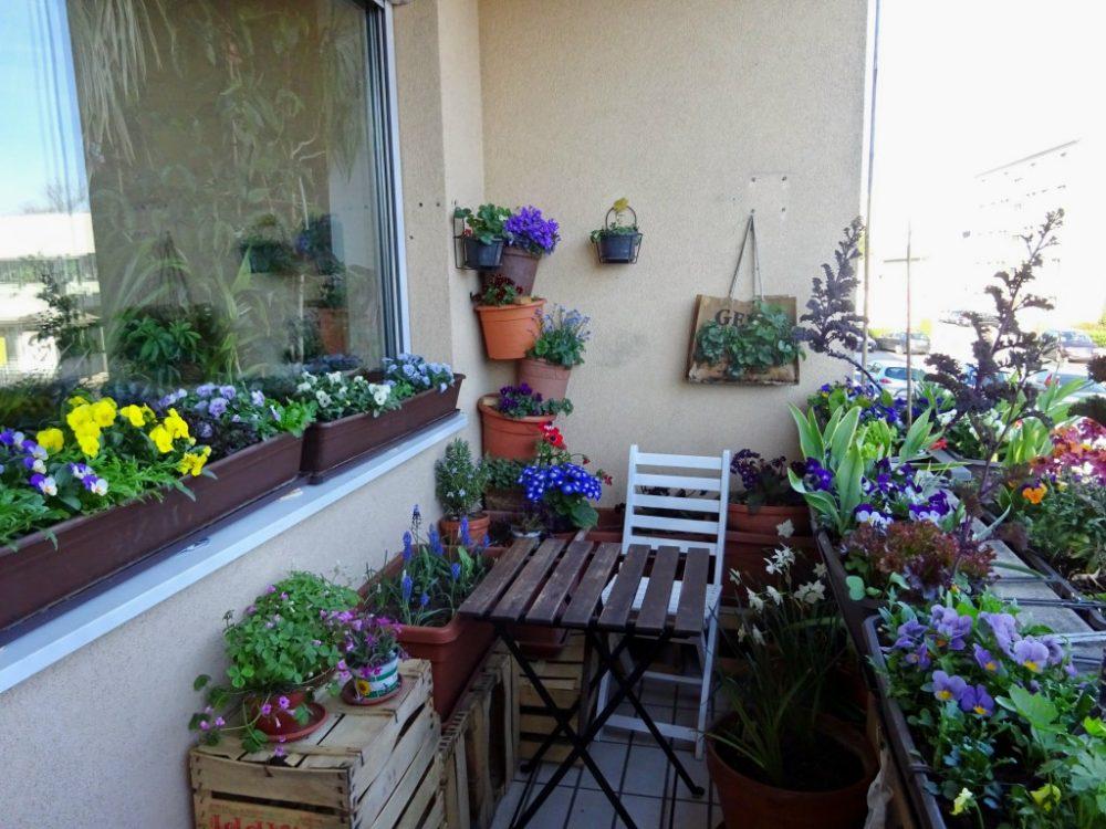 Цветы на маленьком балконе