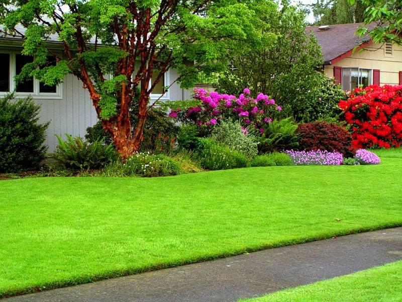 Чтобы внешний вид композиции был привлекательным на протяжении всего сезона, подбирают растения с разными периодами цветения
