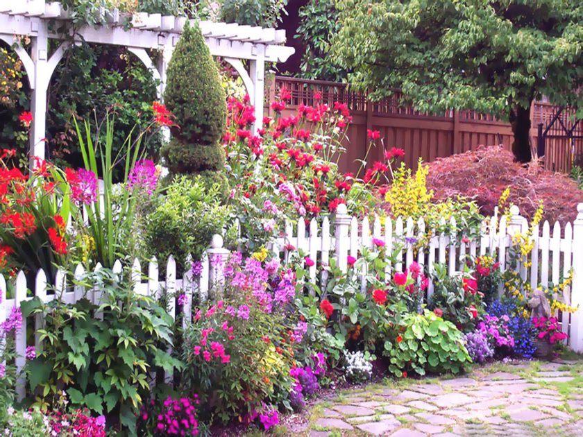bloom flower garden wallpaper