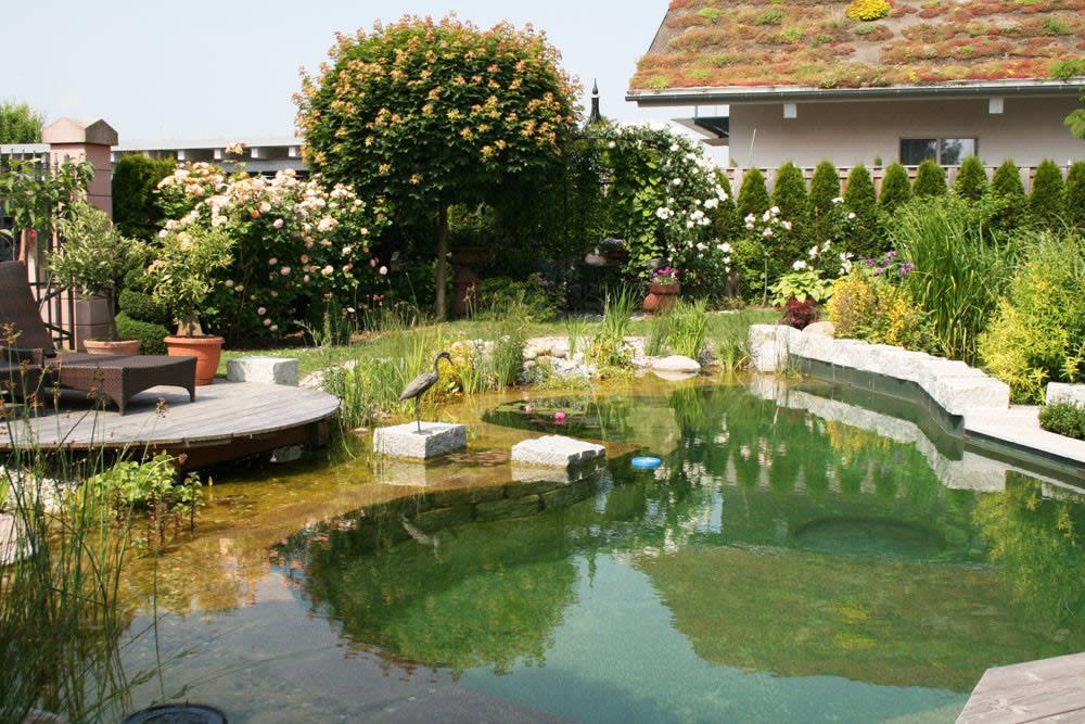 Ландшафтный дизайн плавательного пруда