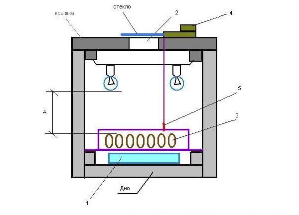 Оборудование инкубатора из пенопласта