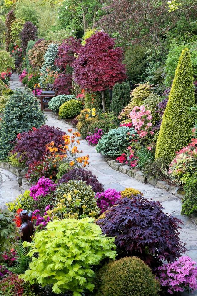 Садоводство — это абстрактное искусство
