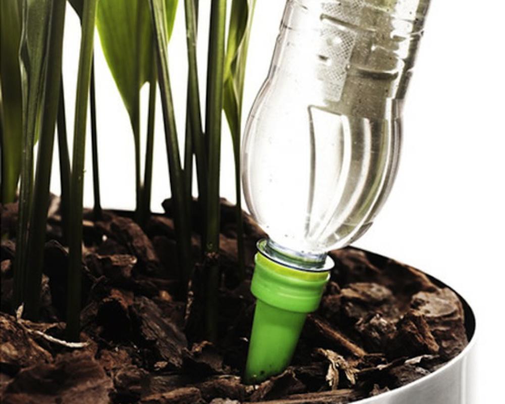 Пример использования насадки для капельного полива комнатных растений
