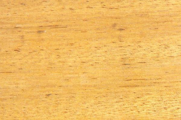 Сережейра: свойства и способы обработки