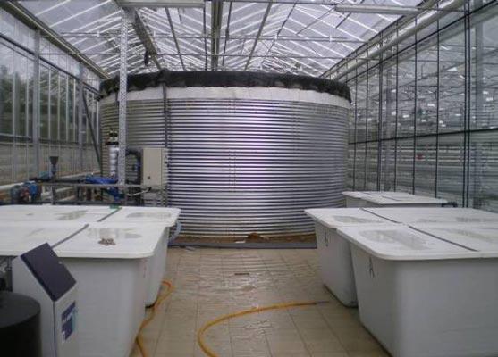 Система водоподготовки в промышленной теплице