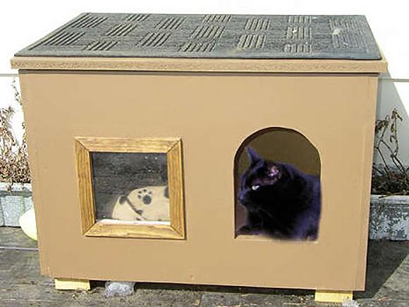 Как сделать зимний дом для кошки