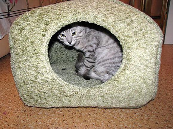 Теплый домик для кошки