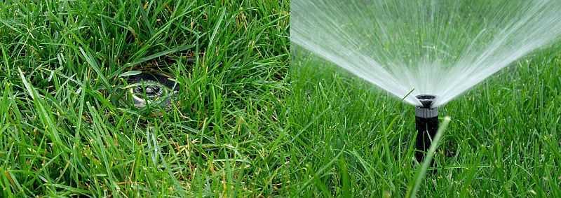 Один из способов автоматического полива растений - разбрызгивание воды