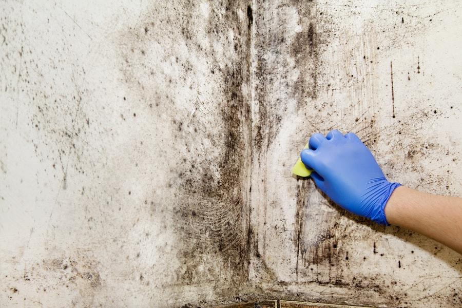 Как избавить от грибка: пошаговая инструкция