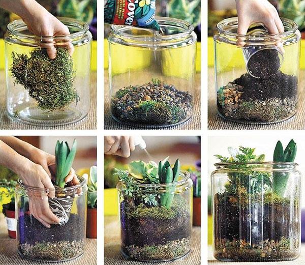 этапы создания флорариума
