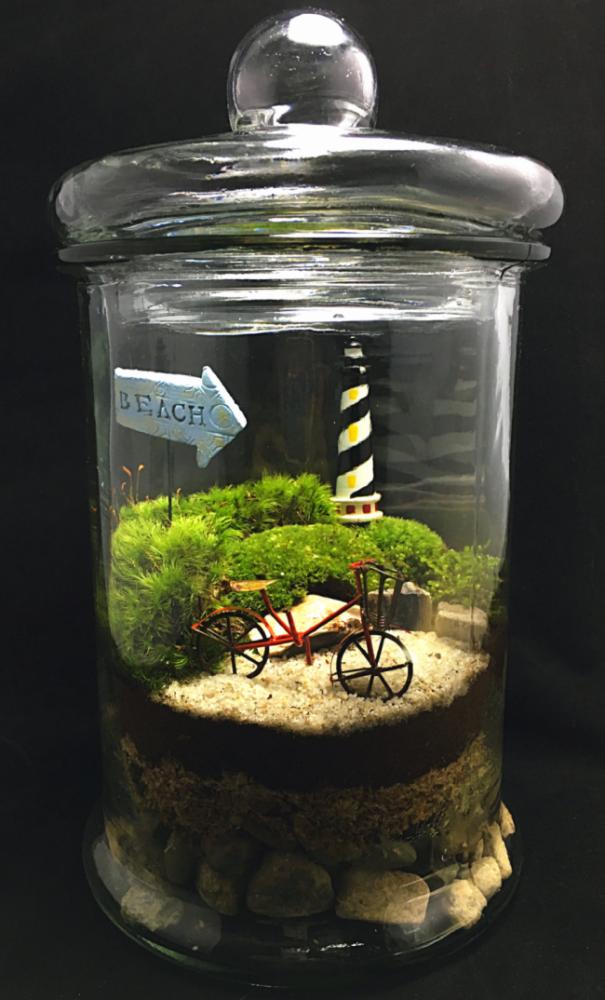 Флорариум со съемной крышкой для создания более комфортных условий для растений