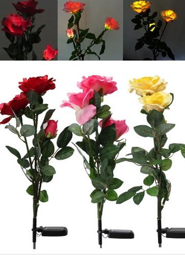 цветы на солнечной батарее розы