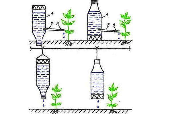 Схема полива