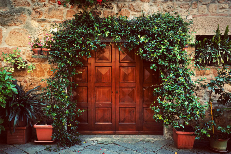 Имейте ввиду, что давление на навес могут оказывать и вьющиеся растения, которыми часто украшают подобные сооружения
