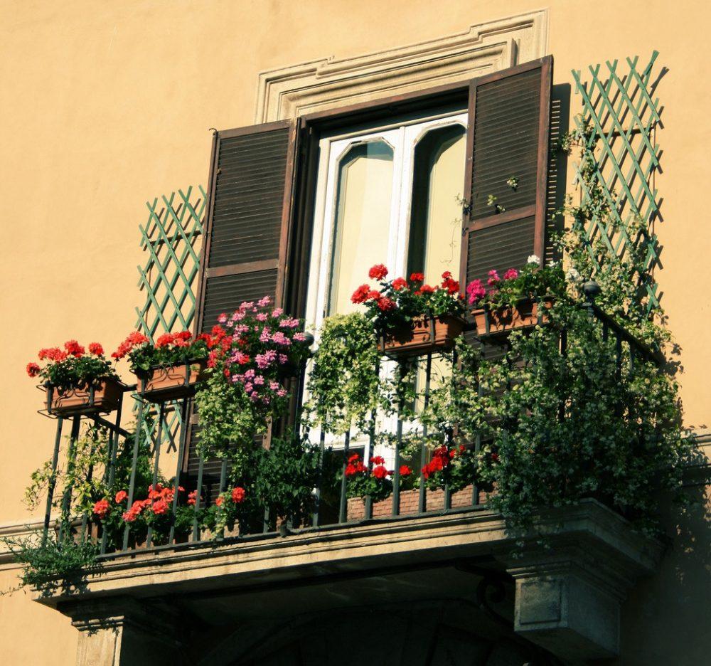 шикарные цветы в интерьере балкона на этажерках интерьер