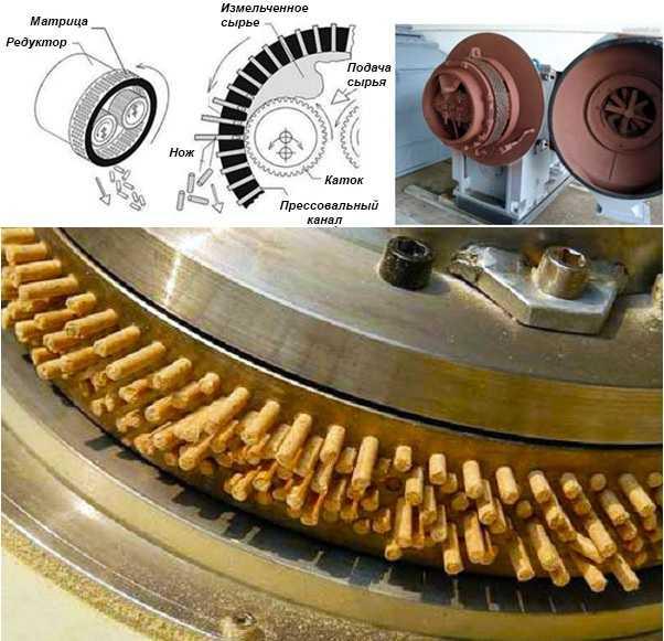Устройство гранулятора с цилиндрической матрицей