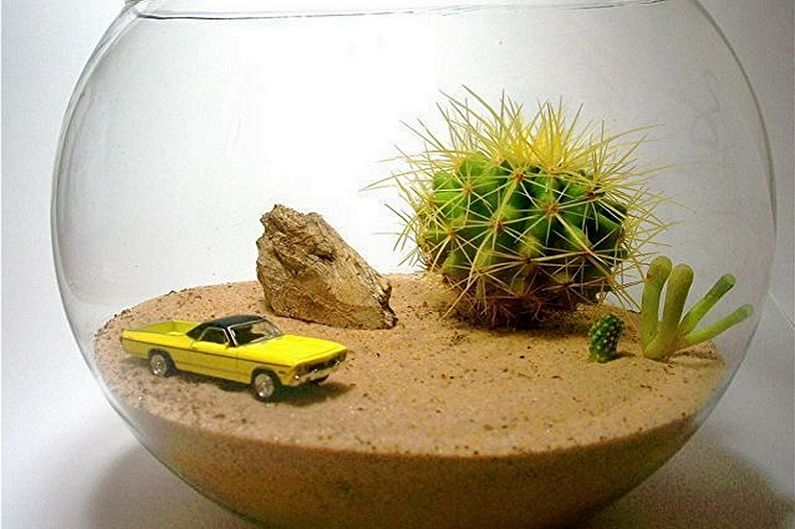 Флорариум своими руками - Пустыня