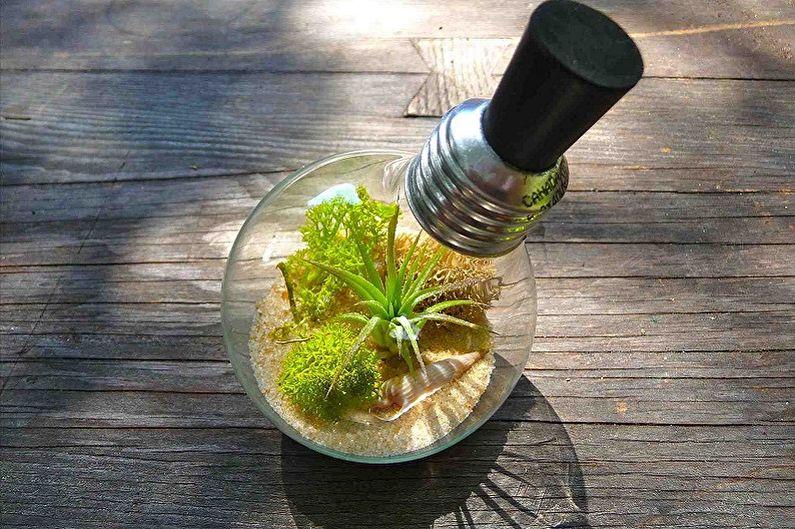 Флорариум своими руками - В лампочке
