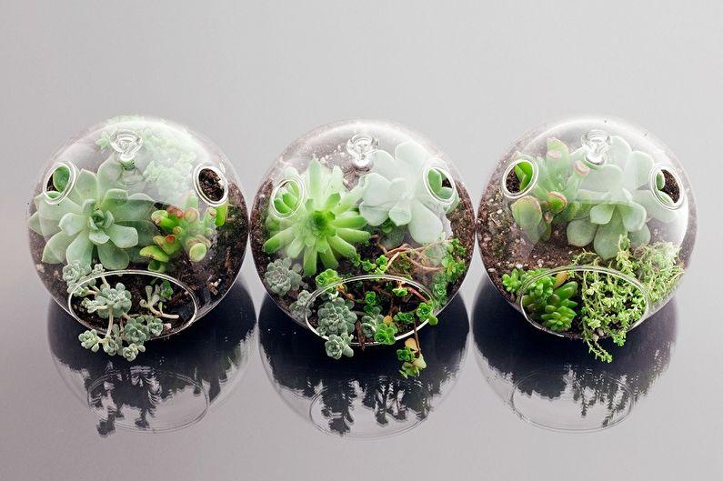 Флорариум своими руками - фото-идеи