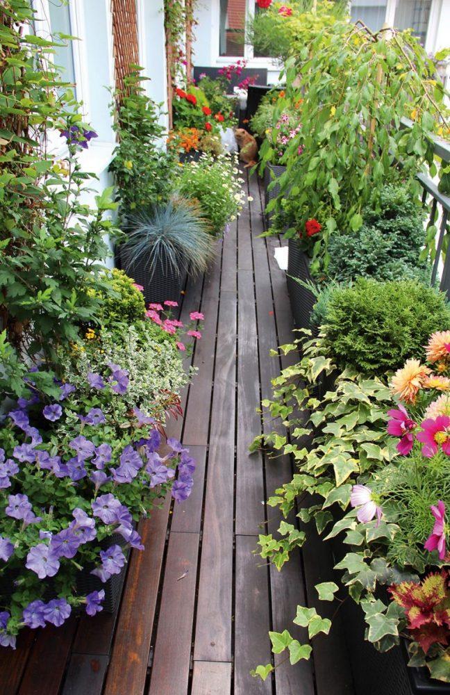 яркие цветы в интерьере балкона на перемычках интерьер