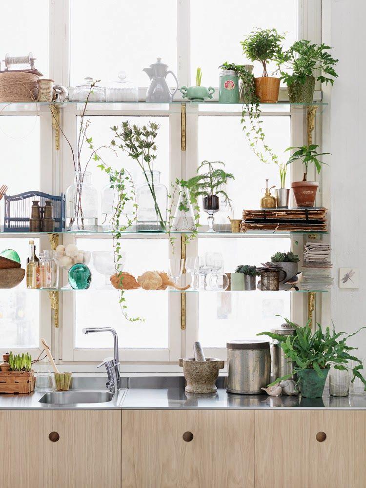 Стеклянные полки на стену: прозрачные подвесные тонкие полки из стекла можно разместить у окна и тем самым обеспечить растениям максимальное поступление света