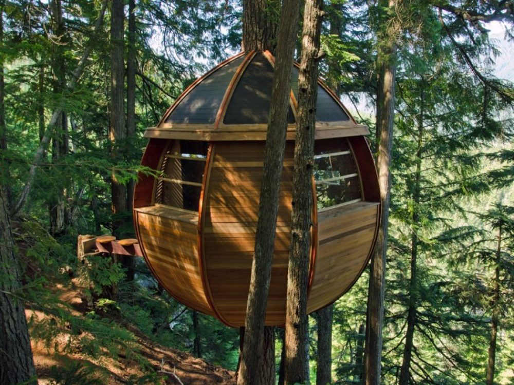 The Tree House HemLoft