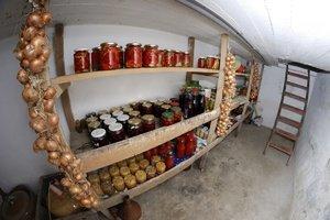 Условия хранения овощей в погребе