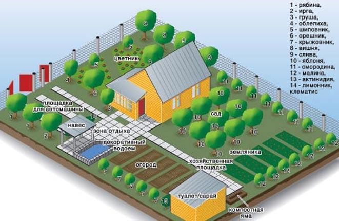 планировка благоустройство земельного участка