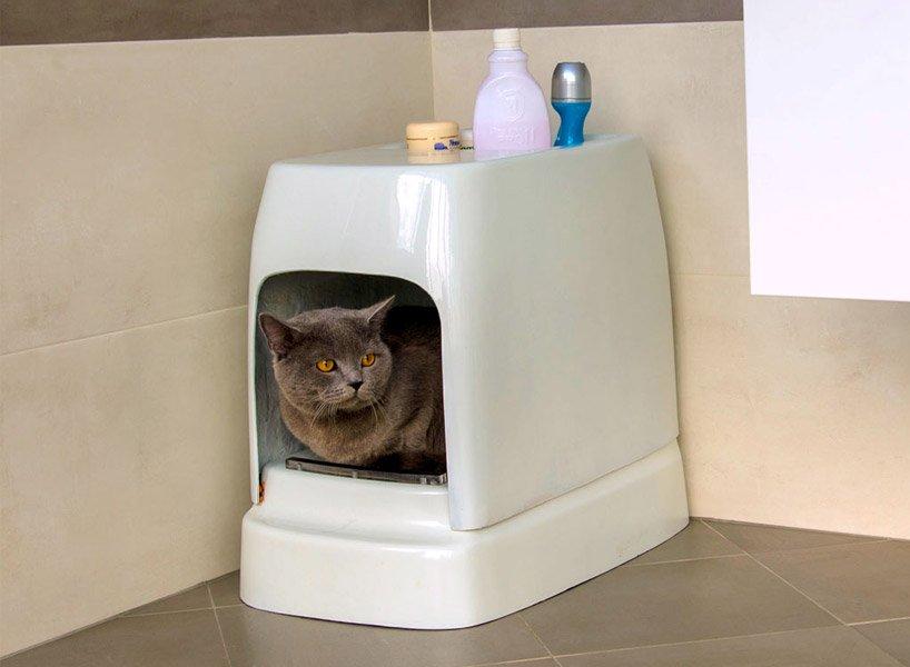Кошка в туалете-домике